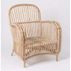 Atlan Rattan Arm Chair  | Occasional Chairs | Seating