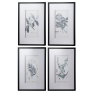 Set of 4 Black & White Botanical Prints